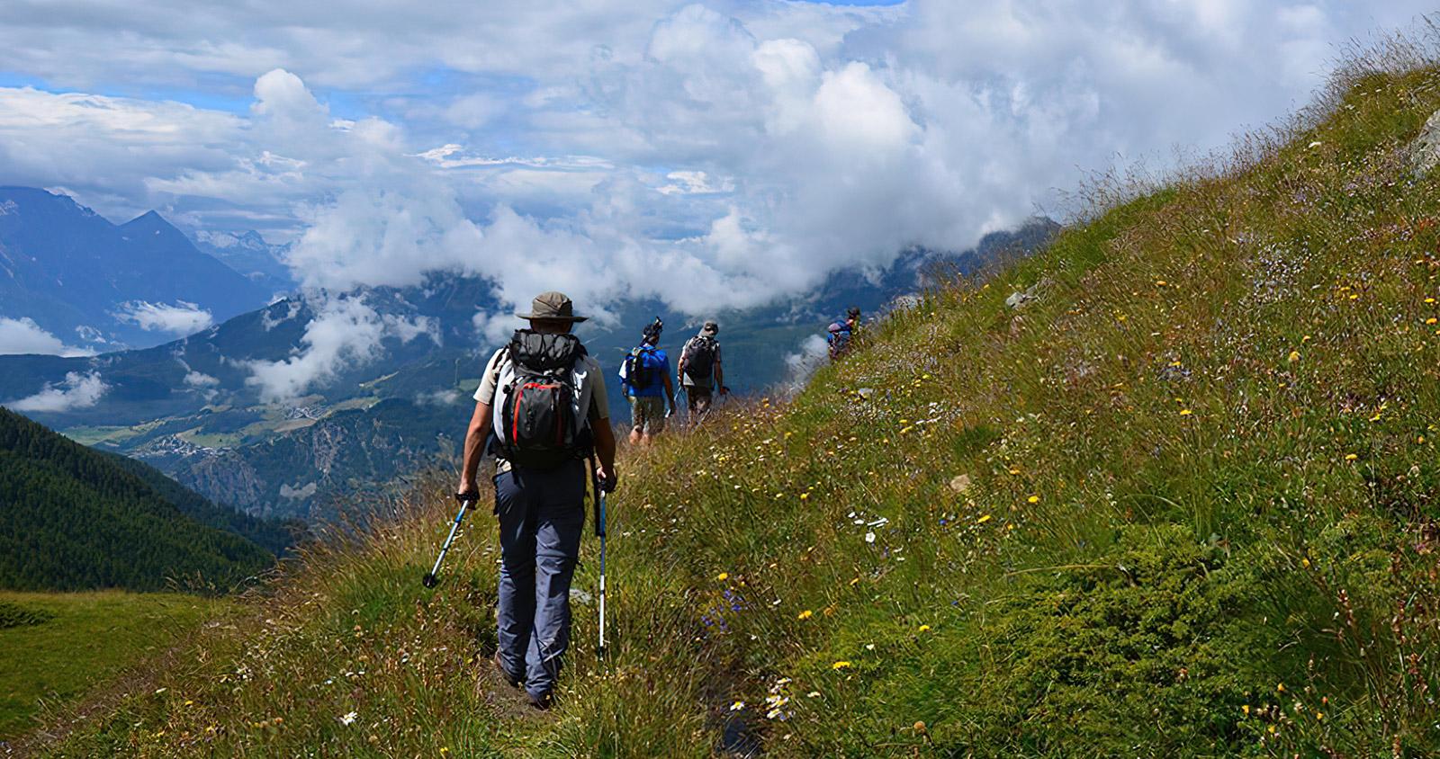 Prendi un appuntamento con la natura e vieni a camminare con le Guide dell'Alpenstock!